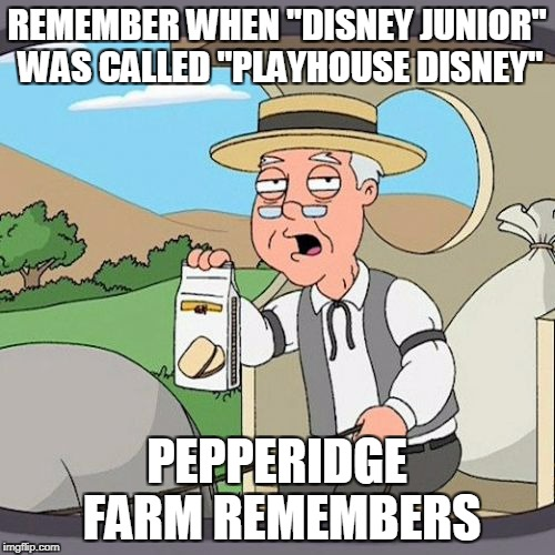"Pepperidge Farm Remembers Meme | REMEMBER WHEN ""DISNEY JUNIOR"" WAS CALLED ""PLAYHOUSE DISNEY"" PEPPERIDGE FARM REMEMBERS 