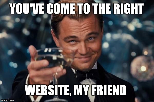 Leonardo Dicaprio Cheers Meme | YOU'VE COME TO THE RIGHT WEBSITE, MY FRIEND | image tagged in memes,leonardo dicaprio cheers | made w/ Imgflip meme maker