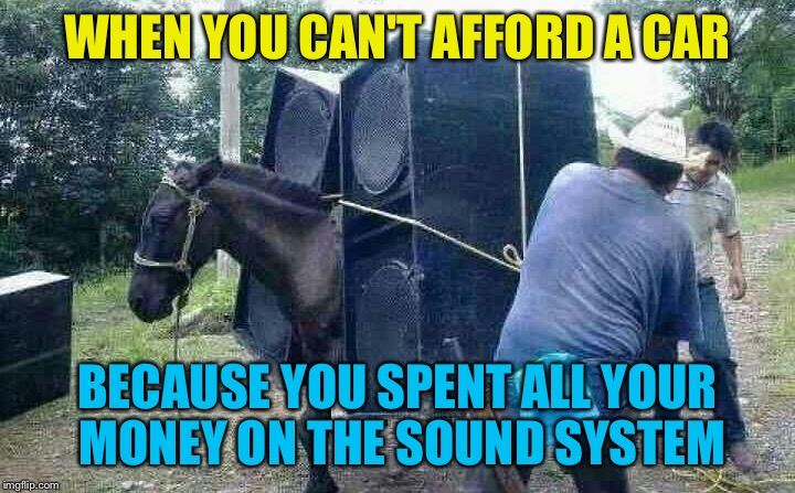 Dude has horse power and a nice system | WHEN YOU CAN'T AFFORD A CAR BECAUSE YOU SPENT ALL YOUR MONEY ON THE SOUND SYSTEM | image tagged in horse,horsepower,system | made w/ Imgflip meme maker