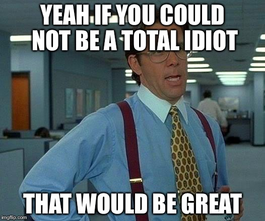 That Would Be Great Meme | YEAH IF YOU COULD NOT BE A TOTAL IDIOT THAT WOULD BE GREAT | image tagged in memes,that would be great | made w/ Imgflip meme maker