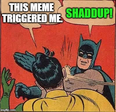 Batman Slapping Robin Meme | THIS MEME TRIGGERED ME. SHADDUP! | image tagged in memes,batman slapping robin | made w/ Imgflip meme maker