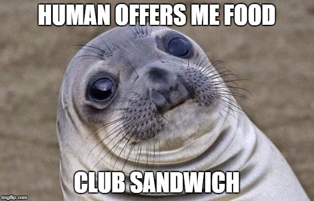 Awkward Moment Sealion Meme | HUMAN OFFERS ME FOOD CLUB SANDWICH | image tagged in memes,awkward moment sealion,AdviceAnimals | made w/ Imgflip meme maker