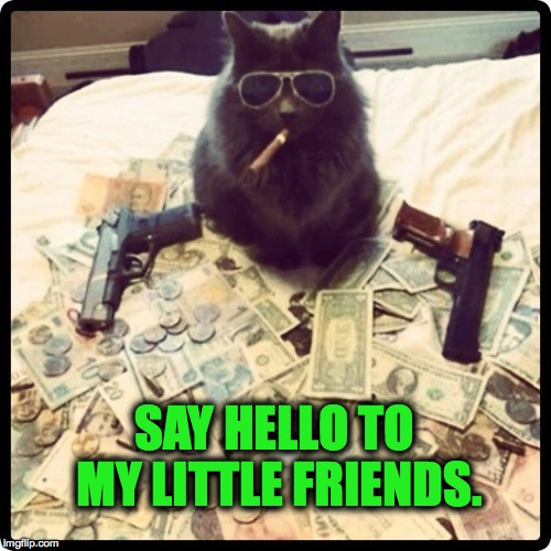Kingpin Kitty | SAY HELLO TO MY LITTLE FRIENDS. | image tagged in friends | made w/ Imgflip meme maker