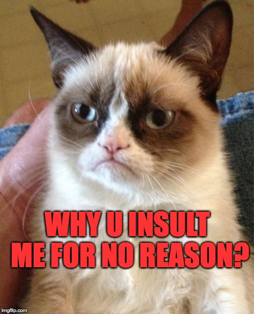 Grumpy Cat Meme | WHY U INSULT ME FOR NO REASON? | image tagged in memes,grumpy cat | made w/ Imgflip meme maker