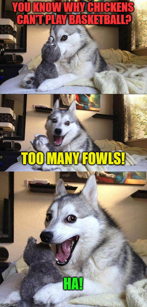Fowl Ball Pun | YOU KNOW WHY CHICKENS CAN'T PLAY BASKETBALL? TOO MANY FOWLS! HA! | image tagged in memes,bad pun dog,basketball,pun,funny | made w/ Imgflip meme maker