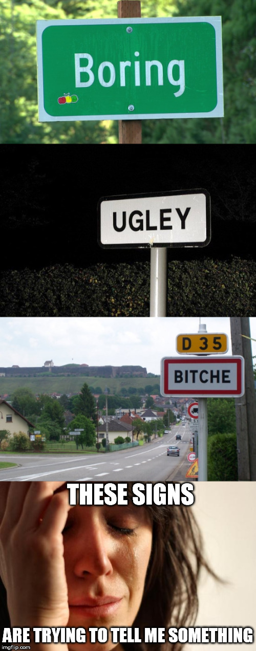 It must be a sign (inspired by CanolaQueen) | THESE SIGNS ARE TRYING TO TELL ME SOMETHING | image tagged in town sign,funny road signs,sign,meme,funny | made w/ Imgflip meme maker