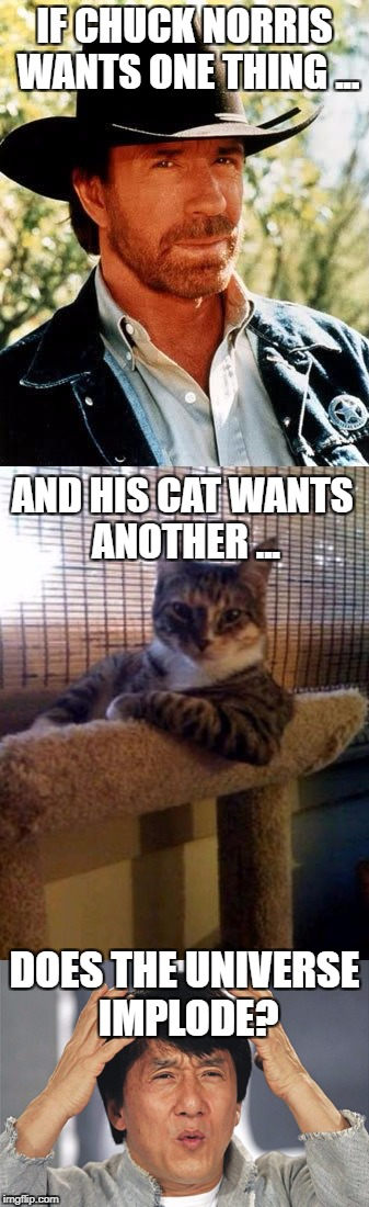 Conflict of Interest... | IF CHUCK NORRIS WANTS ONE THING ... DOES THE UNIVERSE IMPLODE? AND HIS CAT WANTS ANOTHER ... | image tagged in chuck norris,memes,cats | made w/ Imgflip meme maker