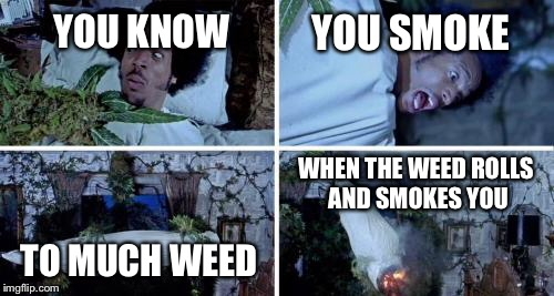 Smoking too much weed could kill you | YOU KNOW YOU SMOKE TO MUCH WEED WHEN THE WEED ROLLS AND SMOKES YOU | image tagged in weed,shorty,roll,smoking | made w/ Imgflip meme maker