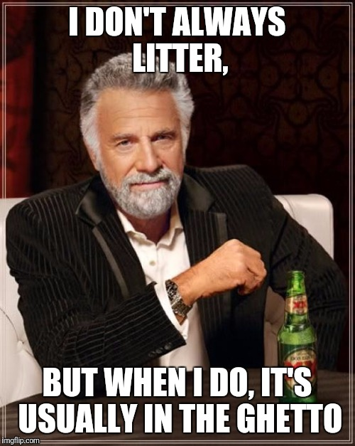 The Most Interesting Man In The World Meme | I DON'T ALWAYS LITTER, BUT WHEN I DO, IT'S USUALLY IN THE GHETTO | image tagged in memes,the most interesting man in the world | made w/ Imgflip meme maker