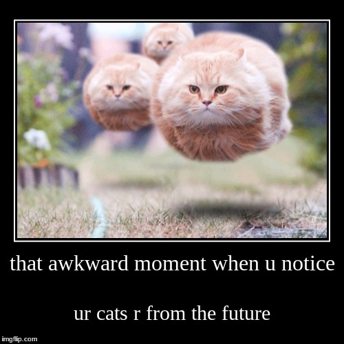 that awkward moment when u notice | ur cats r from the future | image tagged in funny,demotivationals | made w/ Imgflip demotivational maker