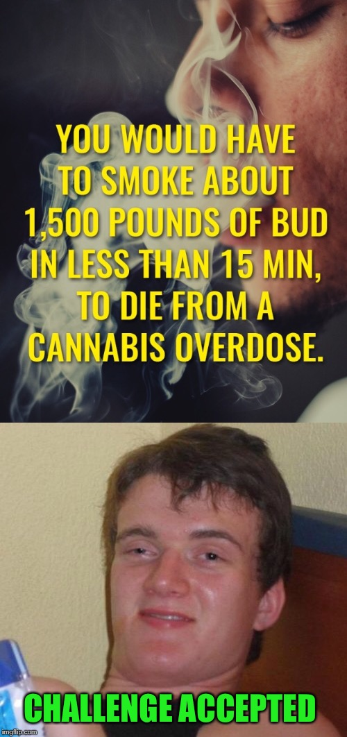 I'll Help (Purely in the name of science of course) Happy Friday | CHALLENGE ACCEPTED | image tagged in 10 guy,marijuana,cannabis,pot,weed,challenge accepted | made w/ Imgflip meme maker
