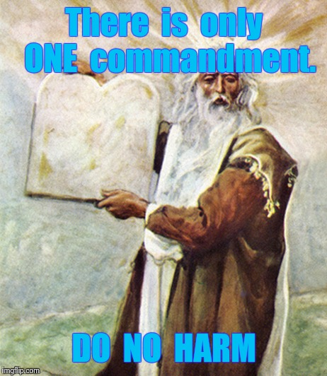 There  is  only  ONE  commandment. DO  NO  HARM | image tagged in moses | made w/ Imgflip meme maker