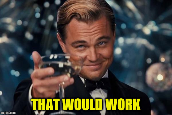 Leonardo Dicaprio Cheers Meme | THAT WOULD WORK | image tagged in memes,leonardo dicaprio cheers | made w/ Imgflip meme maker