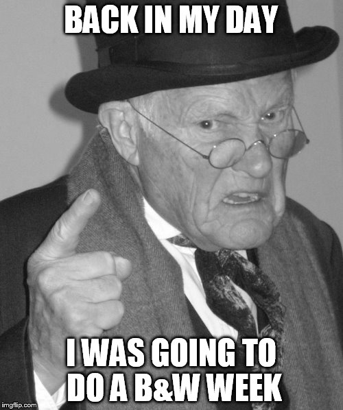 Back in my day | BACK IN MY DAY I WAS GOING TO DO A B&W WEEK | image tagged in back in my day | made w/ Imgflip meme maker