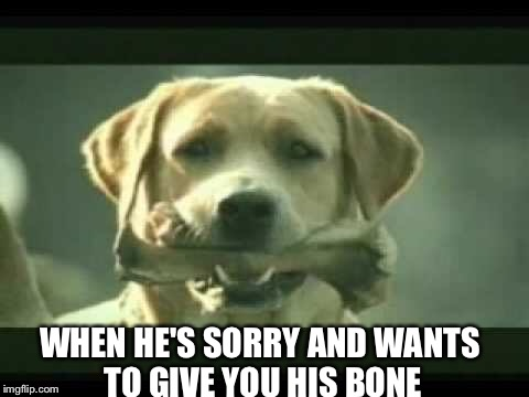 WHEN HE'S SORRY AND WANTS TO GIVE YOU HIS BONE | made w/ Imgflip meme maker