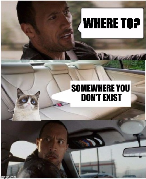 the rock driving grumpy cat | WHERE TO? SOMEWHERE YOU DON'T EXIST | image tagged in the rock driving grumpy cat | made w/ Imgflip meme maker