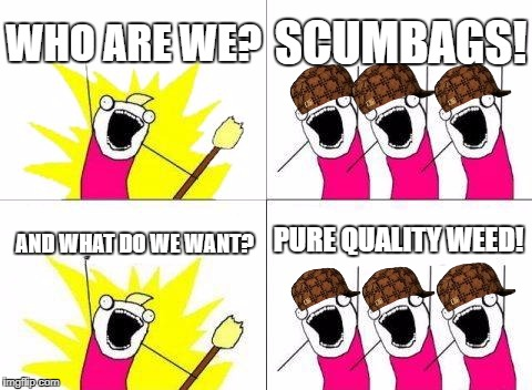 What Do We Want Meme | WHO ARE WE? SCUMBAGS! AND WHAT DO WE WANT? PURE QUALITY WEED! | image tagged in memes,what do we want,scumbag | made w/ Imgflip meme maker