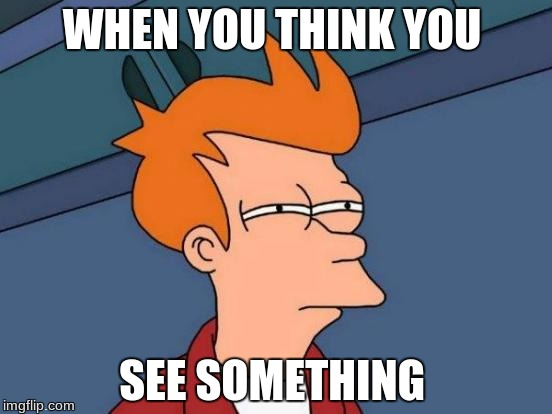Futurama Fry Meme | WHEN YOU THINK YOU SEE SOMETHING | image tagged in memes,futurama fry | made w/ Imgflip meme maker