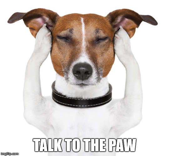 TALK TO THE PAW | made w/ Imgflip meme maker