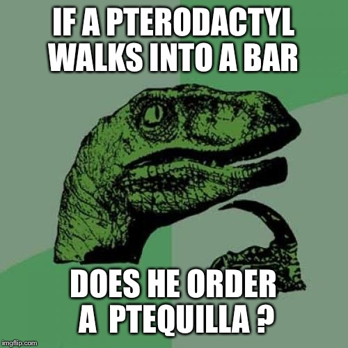 Philosoraptor Meme | IF A PTERODACTYL WALKS INTO A BAR DOES HE ORDER A  PTEQUILLA ? | image tagged in memes,philosoraptor | made w/ Imgflip meme maker