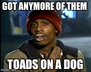 Y'all Got Any More Of That Meme | GOT ANYMORE OF THEM TOADS ON A DOG | image tagged in memes,yall got any more of | made w/ Imgflip meme maker