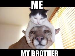 ME MY BROTHER | image tagged in truth | made w/ Imgflip meme maker