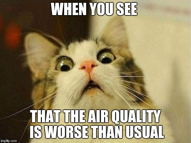 Scared Cat Meme | WHEN YOU SEE THAT THE AIR QUALITY IS WORSE THAN USUAL | image tagged in memes,scared cat | made w/ Imgflip meme maker