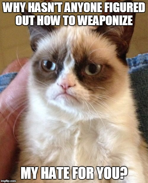 Grumpy Cat Meme | WHY HASN'T ANYONE FIGURED OUT HOW TO WEAPONIZE MY HATE FOR YOU? | image tagged in memes,grumpy cat | made w/ Imgflip meme maker