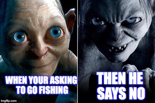 WHEN YOUR ASKING TO GO FISHING THEN HE SAYS NO | image tagged in nice gollum angry gollum | made w/ Imgflip meme maker