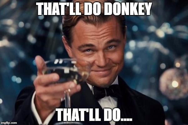 Leonardo Dicaprio Cheers Meme | THAT'LL DO DONKEY THAT'LL DO.... | image tagged in memes,leonardo dicaprio cheers | made w/ Imgflip meme maker