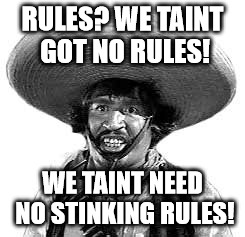 stinking rules | RULES? WE TAINT GOT NO RULES! WE TAINT NEED NO STINKING RULES! | image tagged in badges we dont need no stinking badges,taint | made w/ Imgflip meme maker