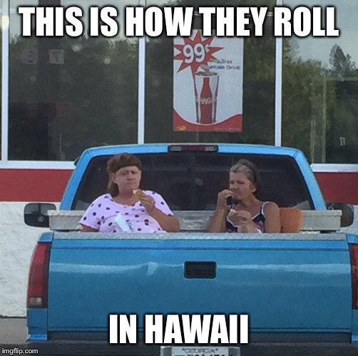 THIS IS HOW THEY ROLL IN HAWAII | made w/ Imgflip meme maker