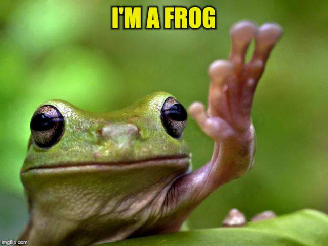 I'M A FROG | made w/ Imgflip meme maker