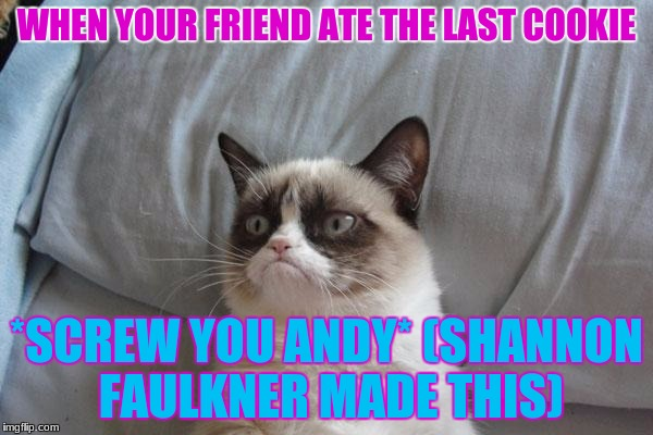 Grumpy Cat Bed Meme | WHEN YOUR FRIEND ATE THE LAST COOKIE *SCREW YOU ANDY* (SHANNON FAULKNER MADE THIS) | image tagged in memes,grumpy cat bed,grumpy cat | made w/ Imgflip meme maker