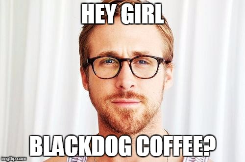 Intellectual Ryan Gosling |  HEY GIRL; BLACKDOG COFFEE? | image tagged in intellectual ryan gosling | made w/ Imgflip meme maker