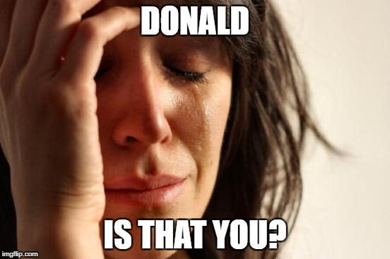 First World Problems Meme | DONALD IS THAT YOU? | image tagged in memes,first world problems | made w/ Imgflip meme maker