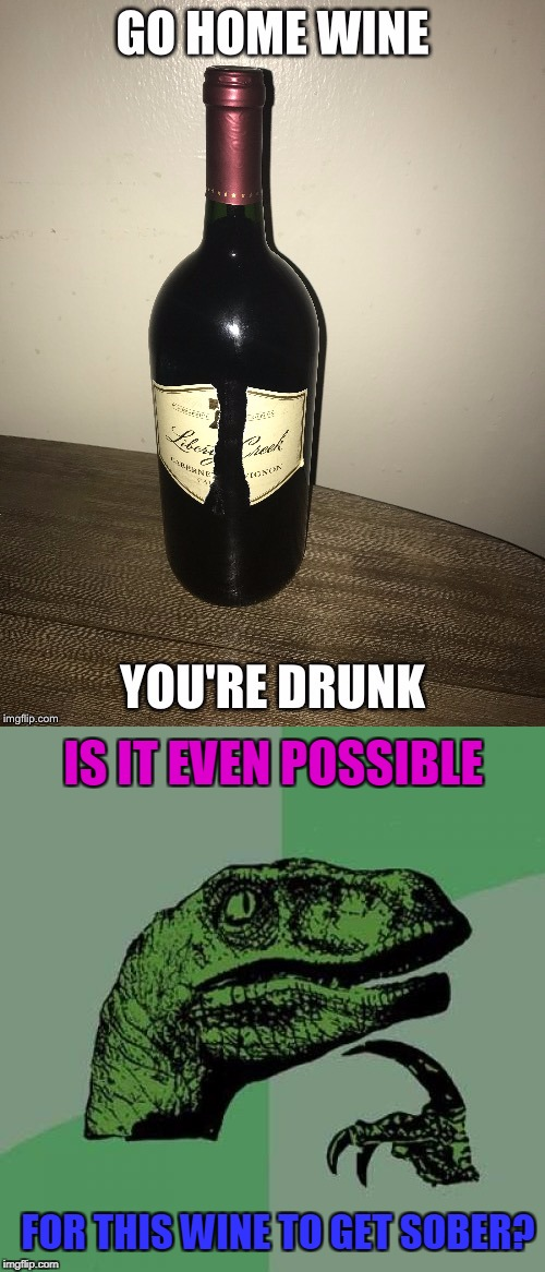 I found this on our little Imgflip and wondered....  (NOT MY WINE!) | FOR THIS WINE TO GET SOBER? IS IT EVEN POSSIBLE | image tagged in go home youre drunk,go home you're drunk,philosoraptor | made w/ Imgflip meme maker