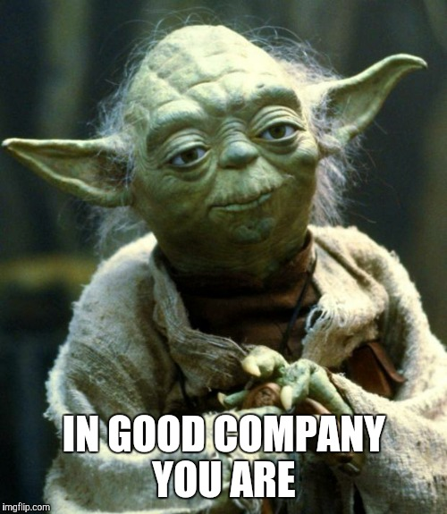 Star Wars Yoda Meme | IN GOOD COMPANY YOU ARE | image tagged in memes,star wars yoda | made w/ Imgflip meme maker