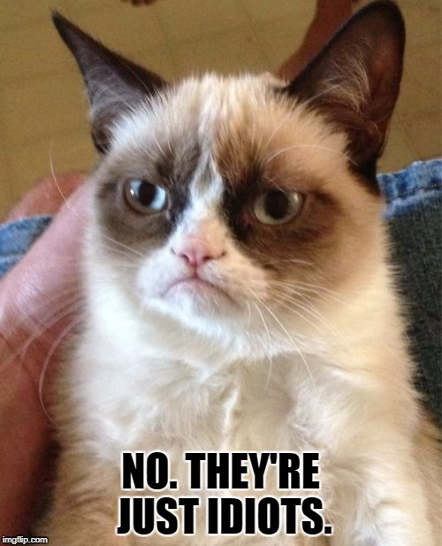 Grumpy Cat Meme | NO. THEY'RE JUST IDIOTS. | image tagged in memes,grumpy cat | made w/ Imgflip meme maker