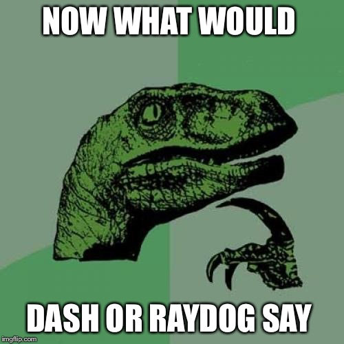 Philosoraptor Meme | NOW WHAT WOULD DASH OR RAYDOG SAY | image tagged in memes,philosoraptor | made w/ Imgflip meme maker