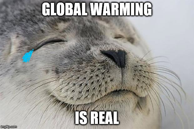 Satisfied Seal Meme | GLOBAL WARMING IS REAL | image tagged in memes,satisfied seal | made w/ Imgflip meme maker