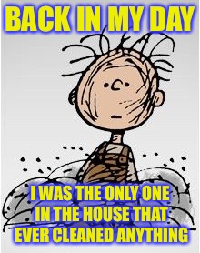 Pig Pen | BACK IN MY DAY I WAS THE ONLY ONE IN THE HOUSE THAT EVER CLEANED ANYTHING | image tagged in pig pen | made w/ Imgflip meme maker