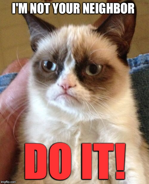 Grumpy Cat Meme | I'M NOT YOUR NEIGHBOR DO IT! | image tagged in memes,grumpy cat | made w/ Imgflip meme maker