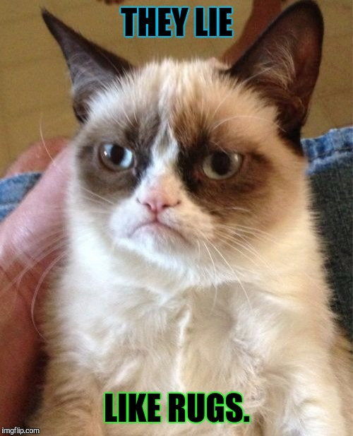 Grumpy Cat Meme | THEY LIE LIKE RUGS. | image tagged in memes,grumpy cat | made w/ Imgflip meme maker