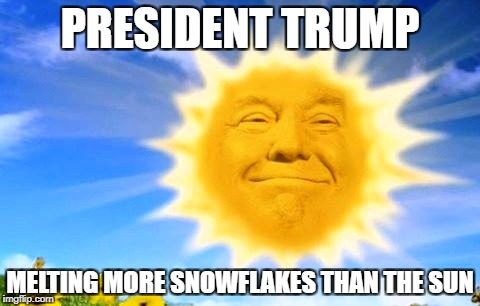 Liberal Snowflakes Beware | PRESIDENT TRUMP MELTING MORE SNOWFLAKES THAN THE SUN | image tagged in memes,antifa,liberals,leftists,donald trump | made w/ Imgflip meme maker