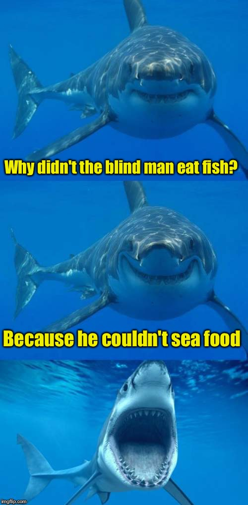 Bad Shark Pun  | Why didn't the blind man eat fish? Because he couldn't sea food | image tagged in bad shark pun | made w/ Imgflip meme maker