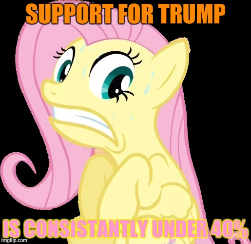 SUPPORT FOR TRUMP IS CONSISTANTLY UNDER 40% | made w/ Imgflip meme maker