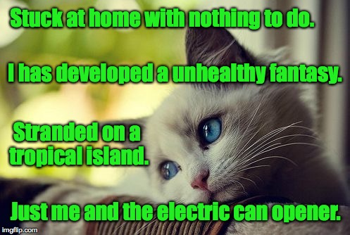 First World Problems Cat writes a haiku. | Stuck at home with nothing to do. Just me and the electric can opener. I has developed a unhealthy fantasy. Stranded on a tropical island. | image tagged in memes,first world problems cat,cats,haiku | made w/ Imgflip meme maker
