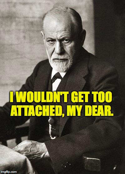 I WOULDN'T GET TOO ATTACHED, MY DEAR. | made w/ Imgflip meme maker