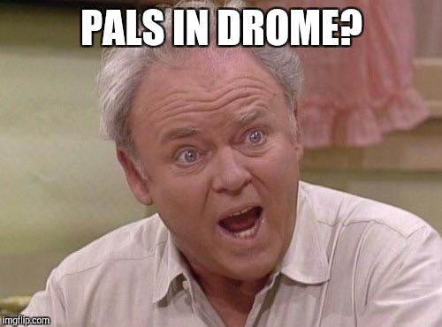 Memes, Archie | PALS IN DROME? | image tagged in memes,archie | made w/ Imgflip meme maker